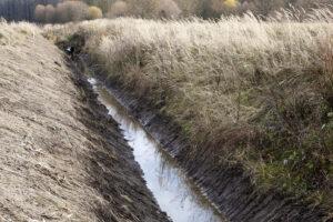 2015 lapkritis. Sulyginta, sutvarkyta. Neliko krūmų, urvų, bebrų. Ar tai turės įtakos šalia dirbmų laukų derliui?
